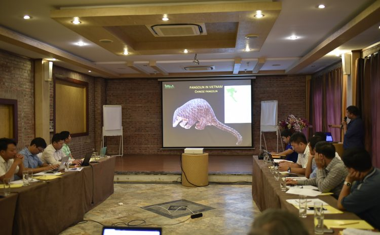 Consultation workshop for national action plan of Pangolin conservation in Vietnam, Hanoi 09-10 July 2019