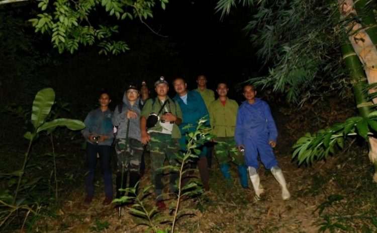 The 3rd field survey and research for Lorises (Nycticebus spp.) in Xuan Lien Nature Reserve