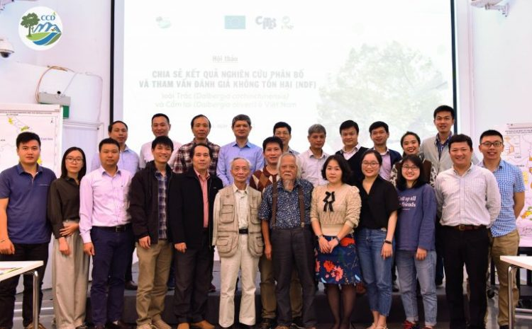 Workshop on rosewood management and Non-detriment finding (NDF) report for Dalbergia cochinchinensis and D. oliveri in Vietnam