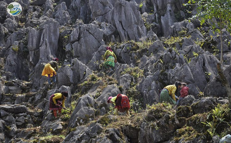 What is the aspiration of ethnic minority communities in Ha Giang province?