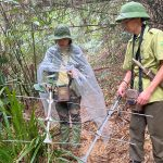 Studying and monitoring turtles and tortoises in Xuan Lien Nature Reserve