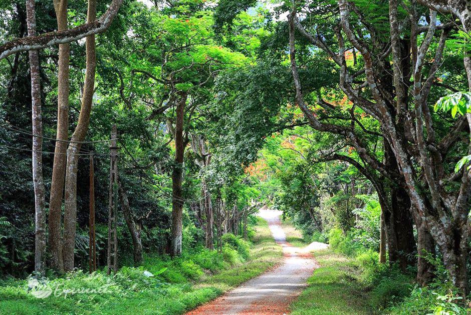 Phát triển du lịch bền vững vườn quốc gia Cúc Phương – tỉnh Ninh Bình