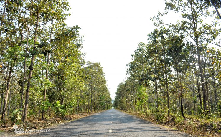 Đề án phát triển du lịch vườn quốc gia Chư Mom Ray – tỉnh Kon Tum